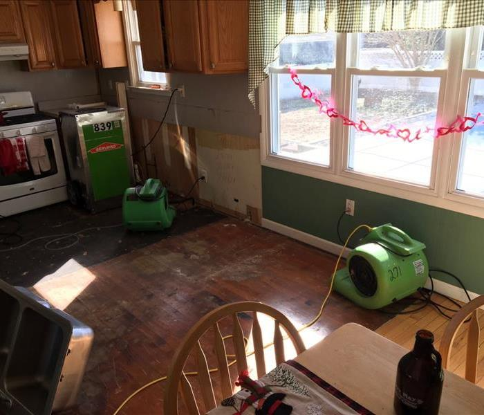 Water Damage causes Mold After