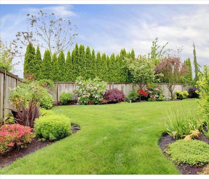 Backyard with landscaping. There are many trees, plants and red, pink and white flowers