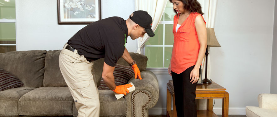 Berlin, NJ carpet upholstery cleaning