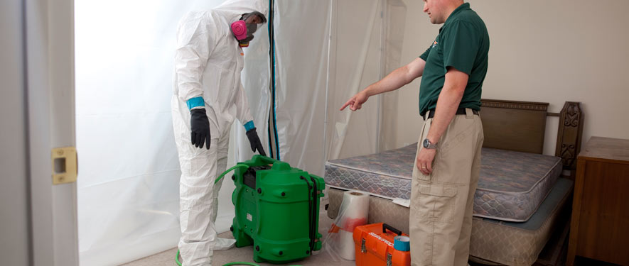 Berlin, NJ mold removal process